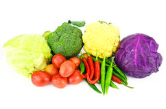 Mixed Vegetables isolated on white background. Stock Photos