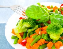 Mixed vegetables on a plate Royalty Free Stock Photos