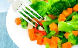 Mixed vegetables on a plate Royalty Free Stock Photo