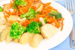 Mixed vegetables on a plate with fork Royalty Free Stock Image