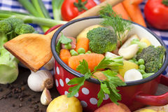 Mixed vegetables in the pot. Mixed raw vegetables in the pot Stock Photos