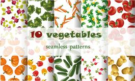 10 mixed vegetables seamless patterns set tomato Stock Images