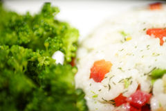 Mixed vegtable rice and broccoli Royalty Free Stock Photos