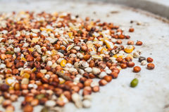 Mixed Wheat and Grain for Bird Feed Stock Images