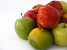 Mixed winter fruity pictures suitable for packaging design Stock Images