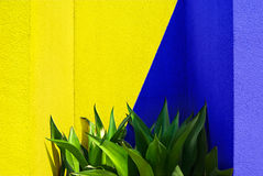 Mixing yellow and blue produce green Stock Photo
