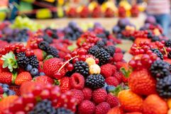 A mixture of berries, close-up, background royalty free stock photos