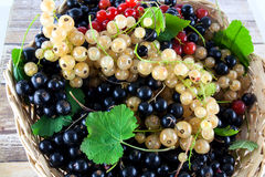Mixed grapes and berries in basket Stock Photos