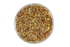 A mixture of cereal grains in a glass cup Royalty Free Stock Photos