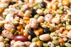 Mixture of dried beans Royalty Free Stock Images