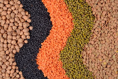 Mixture of dried lentils and beans Royalty Free Stock Images