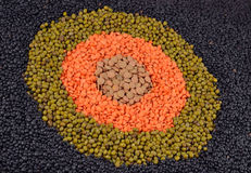 Mixture of dried lentils and beans Stock Image