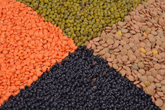 Mixture of dried lentils and beans Stock Images