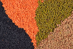 Mixture of dried lentils and beans Royalty Free Stock Image