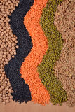 Mixture of dried lentils and beans Stock Photography