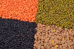 Mixture of dried lentils and beans Royalty Free Stock Photography
