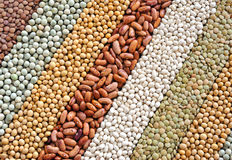 Mixture of dried lentils, peas, soybeans, beans Royalty Free Stock Photography
