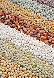 Mixture of dried lentils, peas, soybeans, beans Stock Photography