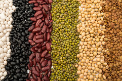 Mixture of dried lentils, peas, soybeans, beans Royalty Free Stock Images