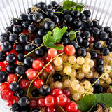 Mixture of garden berries Stock Photography