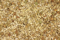 Mixture of grains  background Stock Photo