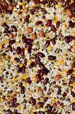 A mixture of grains. A mixture of many grains Royalty Free Stock Photos