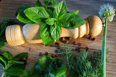 A mixture of herbs Royalty Free Stock Photos