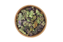 A mixture of herbs in a wooden bowl Stock Photo
