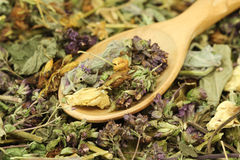 A mixture of herbs in wooden spoon Stock Photography
