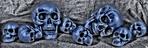 Large and small skulls randomly lying there. Stock Image