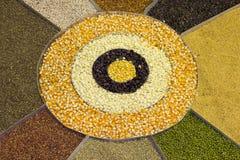 Mixture of Legume collection driedgrains, lentils, peas, soybea Stock Images