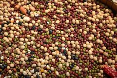 Mixture of legumes Stock Photos