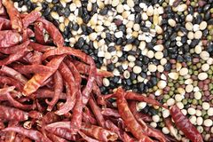 Mixture of legumes Royalty Free Stock Photography