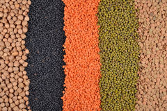 Mixture of lentils and beans Royalty Free Stock Photography