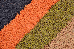 Mixture of lentils and beans Stock Photo