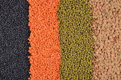 Mixture of lentils and beans Royalty Free Stock Photos