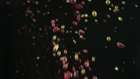 Mixture of liquid paints splashing. This stock video features a close-up shot of a mixture of colorful paints splashing. It shows the colored liquid bouncing off stock video footage