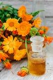 Mixture of marigold Royalty Free Stock Photos