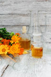 Mixture of marigold Stock Images