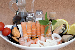 Mixture of mollusc sea Stock Photography
