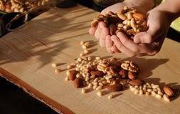 Mixture of nuts almonds walnut cedar stock photos