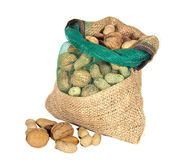 Mixture of nuts in a sack Stock Images