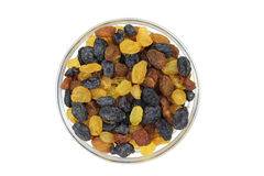 Mixture of raisins in a glass cup Royalty Free Stock Photography