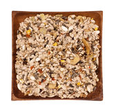 Mixture of seeds for pigeons Stock Image