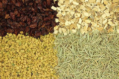 A mixture of spices and seasonings background Royalty Free Stock Photo