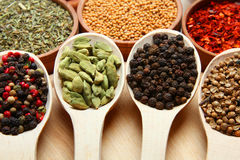 Mixture of spices Royalty Free Stock Photo