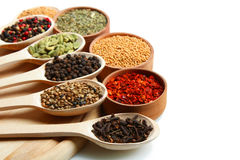 Mixture of spices Stock Images