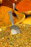 Mixture of various herbs and spices Stock Photo