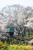 MIYAGI, ЯПОНИЯ - 16-ОЕ АПРЕЛЯ: Автомобиль наклона делает свой путь вниз с следа Стоковое Изображение RF