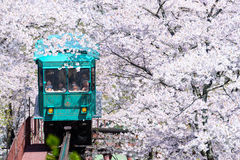 MIYAGI, JAPAN - 16. APRIL: Automarken einer Steigung seine Weise hinunter eine Spur Lizenzfreie Stockfotografie